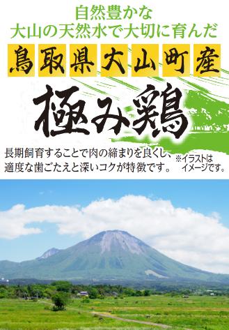 自然豊かな大山の天然水で大切に育んだ鳥取県大山町産極み鶏